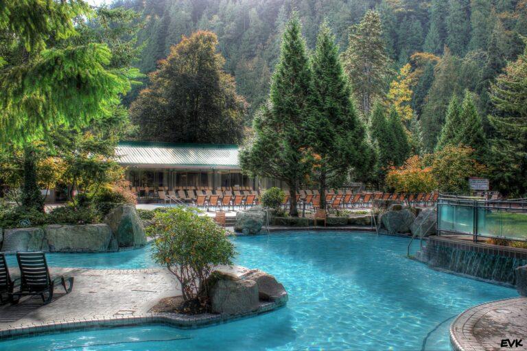 piscine naturelle et biologique
